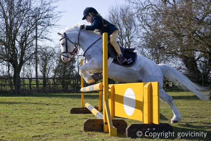 Horse Jumping - Side On